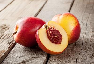 nectarine pit