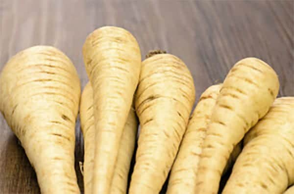can dogs eat parsnips