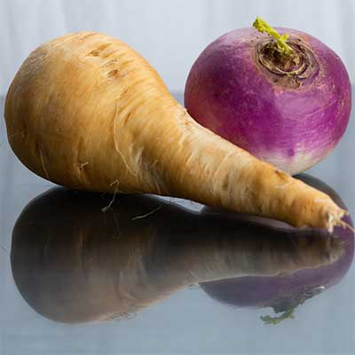 can dogs eat parsnip and turnip